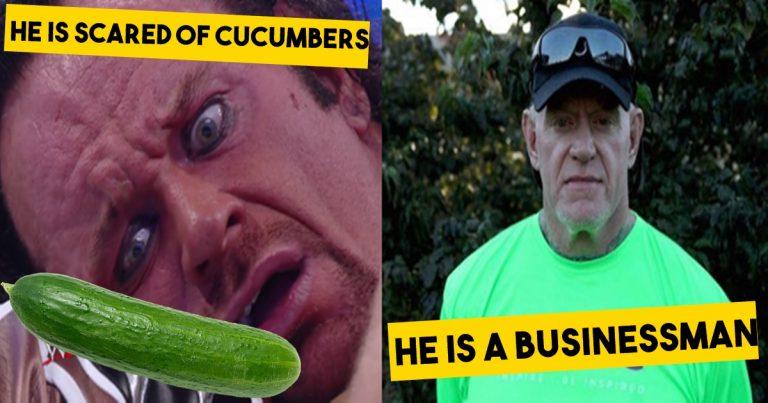Undertaker, fighting , wrestling, WWE