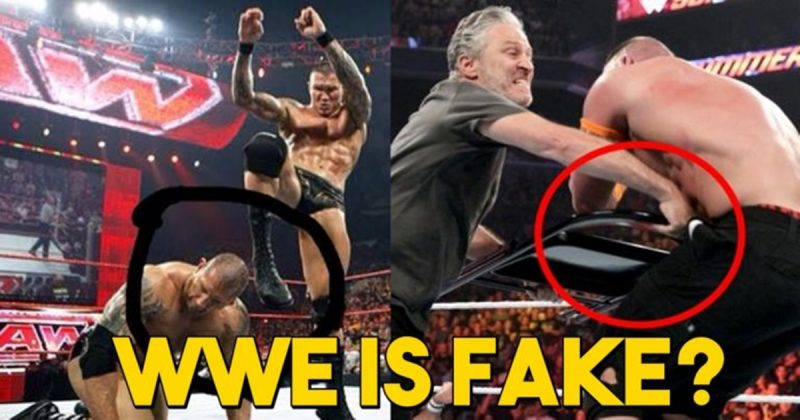 WWE, Fake, fight,