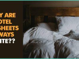 Bedsheets, white, Reason, Colour,