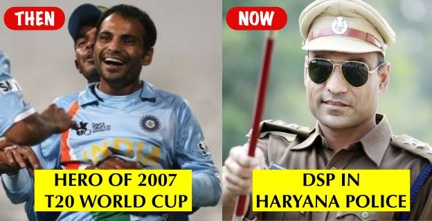 cricketers, Jobs ,