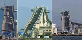 Craziest , Bridges, World, constructed , polymer, structure, theemergingindia, emerging India