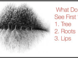 eye, picture, test, article, reveal, personal, life,