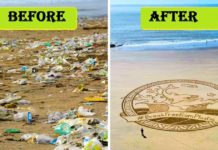 Grandma , Beaches , Cleaned, Inspired , greatest gift, humans , Planet, themergingindia, Emerging , India