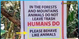 Behave, Animal, people, winning, internet, signboard, urging, sarcastic,