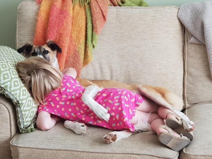 Photos, Child, pets, family, feelings, positive feelings,